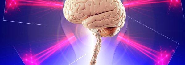 La vibración mental y la ley del mínimo esfuerzo