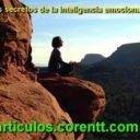 Los secretos de la inteligencia emocional